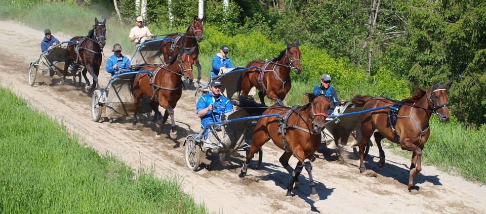 Vår hovedfilosofi er variert og hard trening. Basisen er mye grunntrening/styrketrening, i kombinasjon med intervaller på rakbane eller hurtigkjøring på bane. Vi vektlegger at treningsopplegget må tilpasses hver hest individuelt.