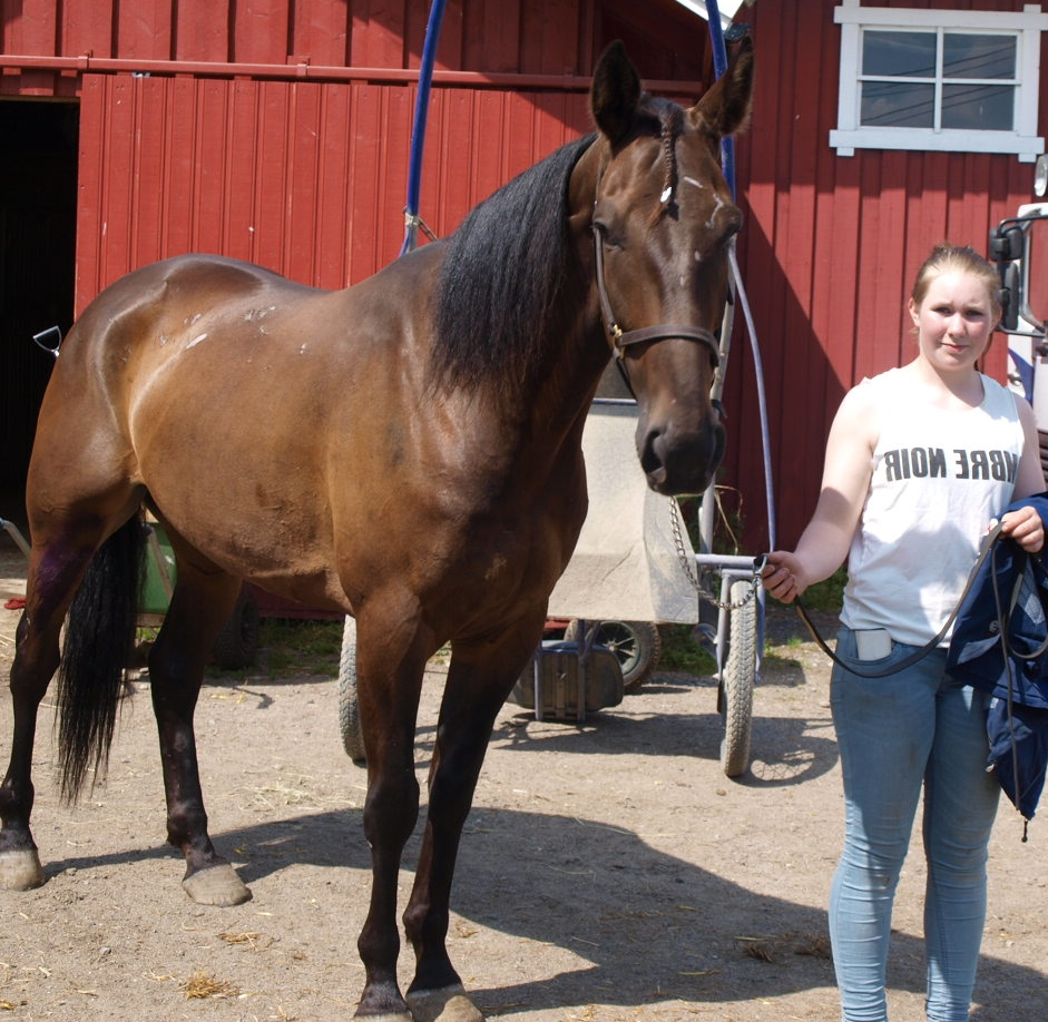 Selmas Classic tok sin andre strake på Jarlberg i går, og holder sin fine form.