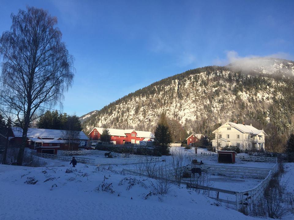 En fin vinterdag i Ådal