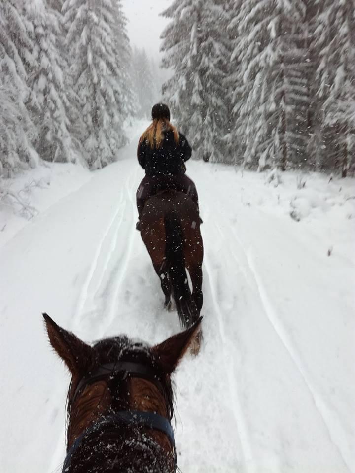 ridetur i snøen